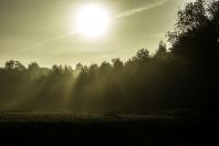 fall_morning_11